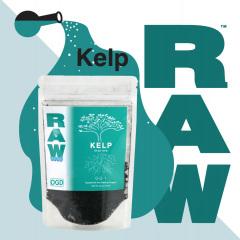 RAW Kelp Social Image