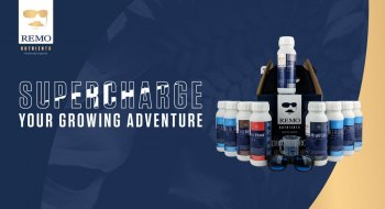 Remo-Supercharge-your-growing-adventure-header-tablet
