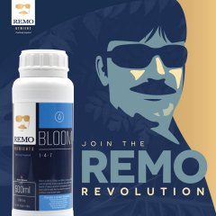 Join The REMO Revolution Social Image